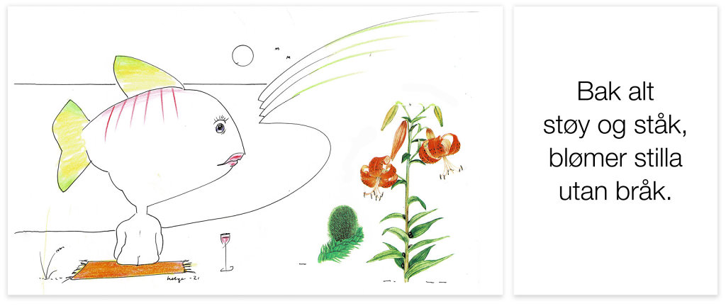 blomserstillautan-braa-k.jpg